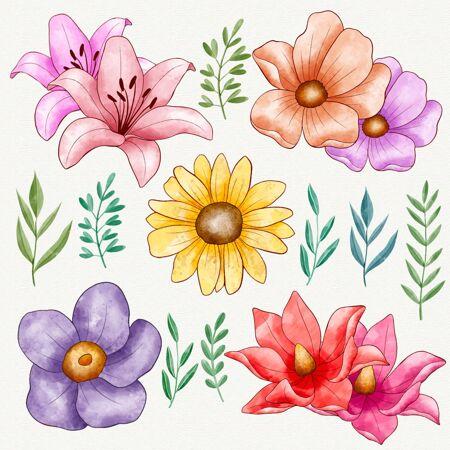 手绘彩色花包