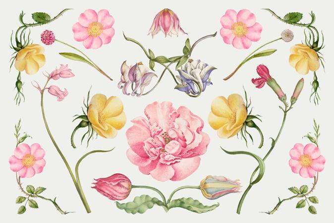 复古花朵插画套装